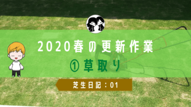 【芝生日記:01】2020春の更新作業①草取り